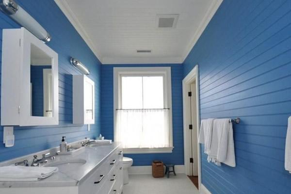 Màu xanh kết hợp trắng -1