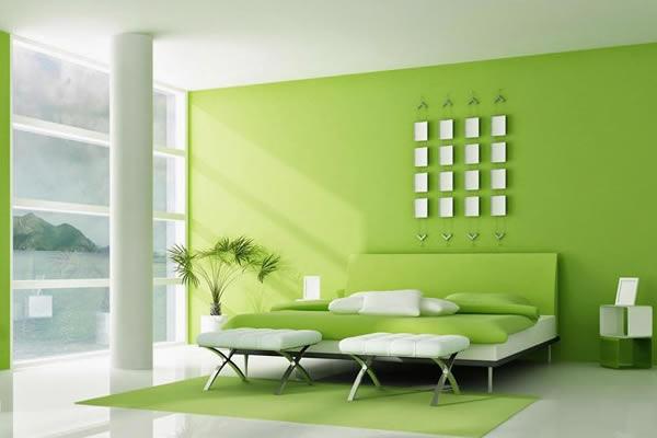 Không gian nhà màu xanh lá cây