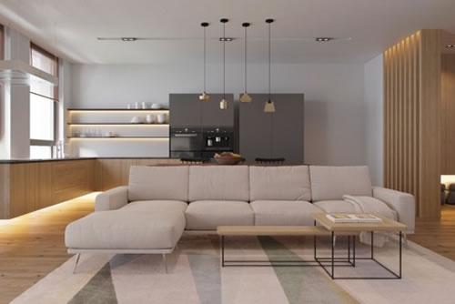 Căn hộ với thiết kế phòng khách liền kề phòng bếp-7