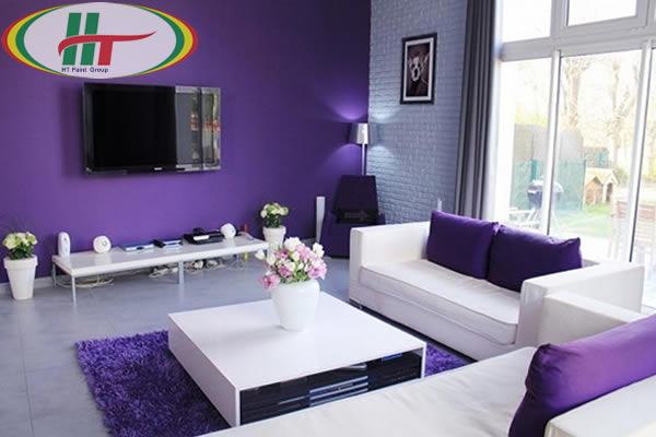 Phòng khách màu tím độc đáo