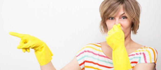 Cách khử mùi sơn trong nhà hiệu quả nhất
