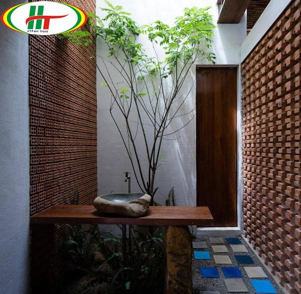 Gợi ý trang trí nhà ấn tượng thu hút hơn với gạch trần