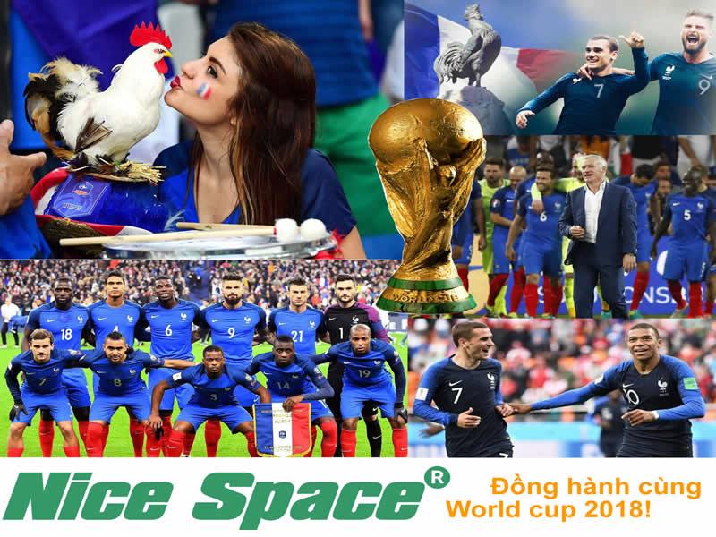 Hãng sơn Nice Space - Tổng kết World cup 2018